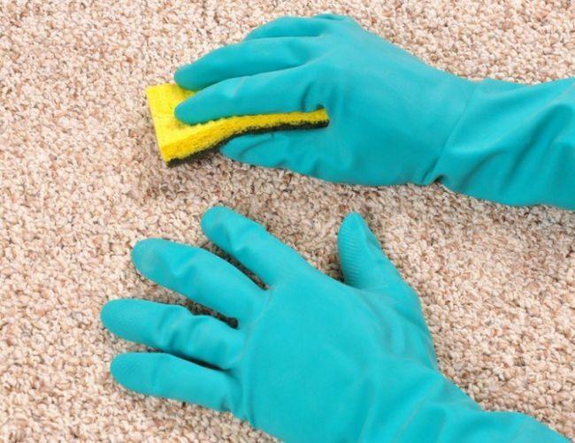 Как очистить ковер от волос