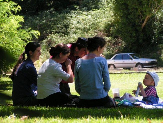 Как организовать пикник
