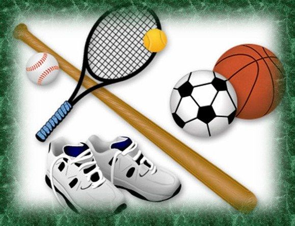 Как организовать спортивные игры
