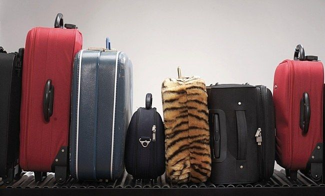 Как отправить багаж в украину