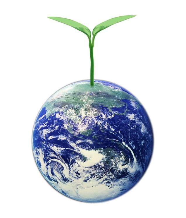 Как решить проблему экологии