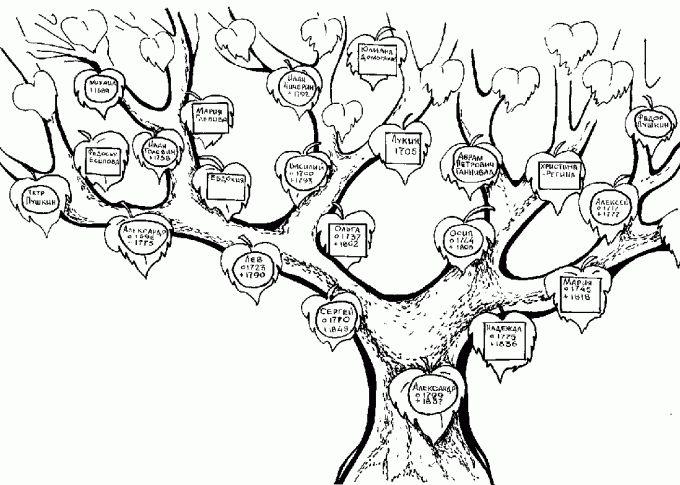 Как сделать родословную своей семьи
