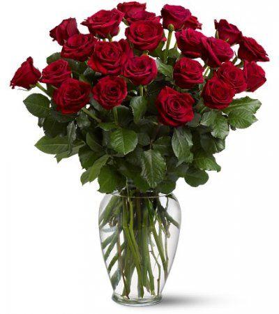 Как вырастить розу из срезанной