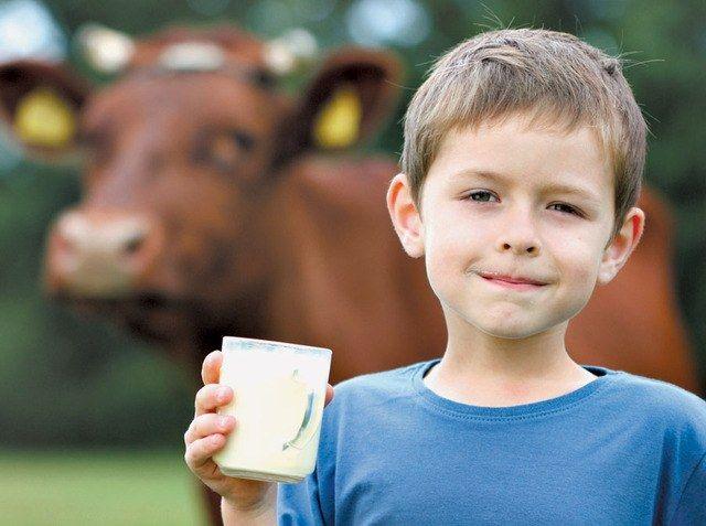 Почему горчит молоко
