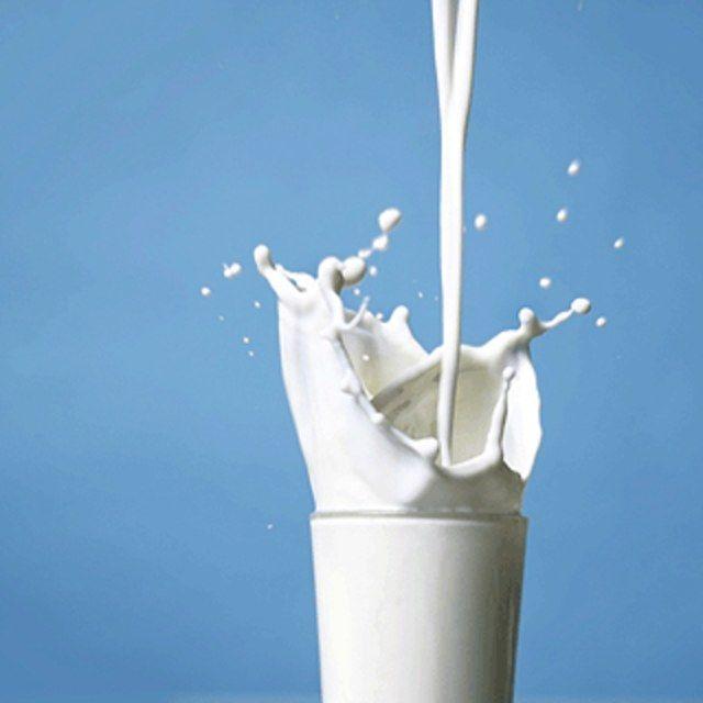 Почему прокисает молоко