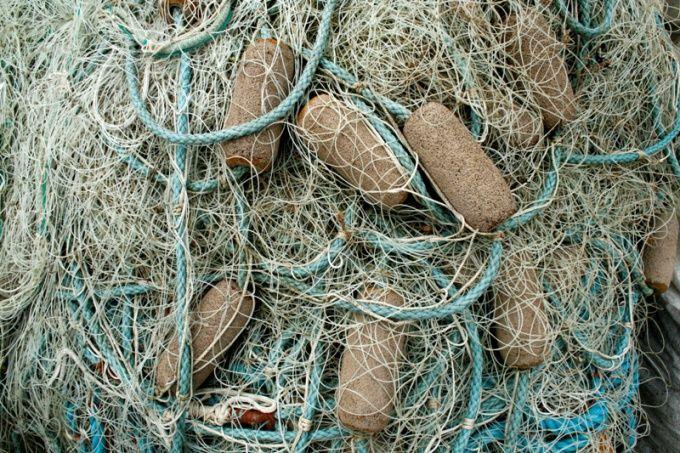 Как ловить рыбу сетью
