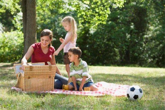 Как организовать пикник в городе