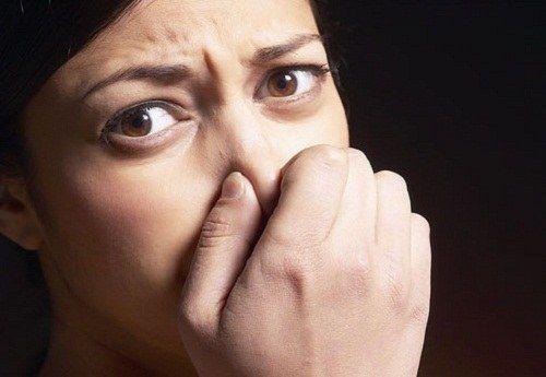 Как вывести запах в помещении